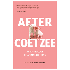After Coetzee